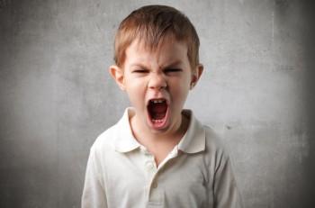 Детские истерики в чем причина (часть первая)
