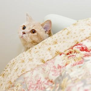 Выбираем одеяло